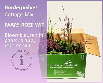 Borderpakket Cottage Mix - Paars-Roze-Wit