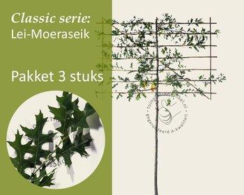 Lei-Moeraseik - Classic - pakket 3 stuks + EXTRA'S!