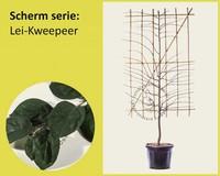 Lei-Kweepeer - Scherm