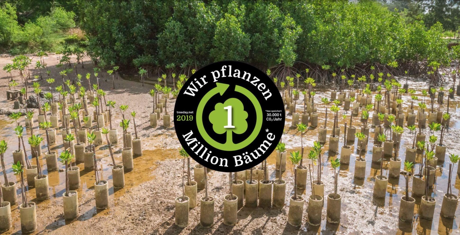 TREEDAY Aufforstung Bäume pflanzen