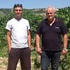 Tenuta de Angelis Pecorino Offida DOCG - Wijn van de maand