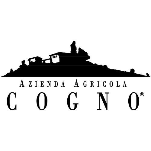 Elvio Cogno