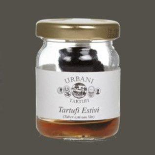 zwarte zomer truffels in glas