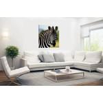 Sweet Living Zebra Schilderij Canvas
