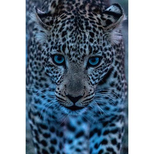 Sweet Living Leopard schilderij canvas - 60xH90 cm