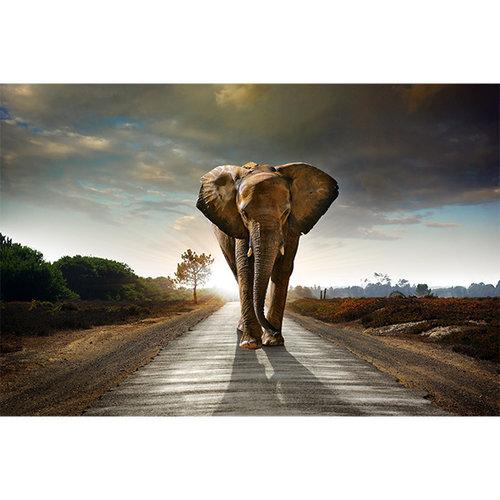 Sweet Living Walking Elephant schilderij Canvas