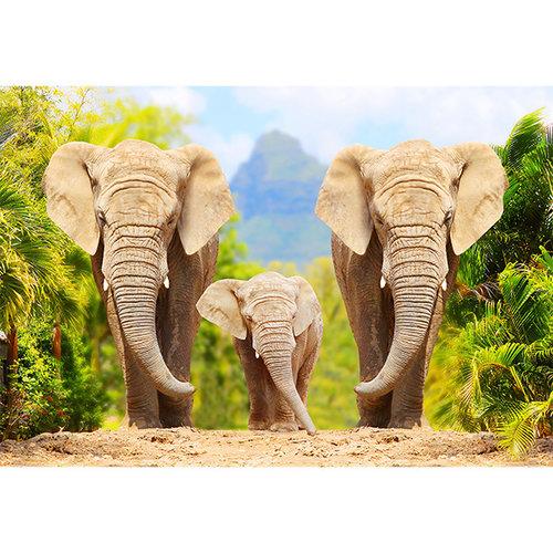 Sweet Living Afrikaanse Olifanten met kalf Schilderij canvas