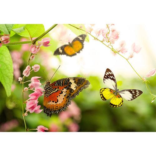 Sweet Living Flying Butterflies Canvas schilderij