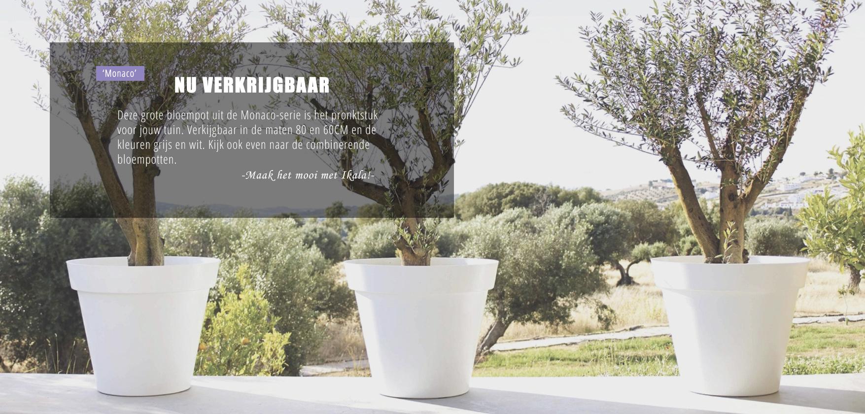 Plantenbakken Voor Buiten Groot.Kunststof Bloempotten Voor Binnen En Buiten Koop Je Bij Ikala Ikala