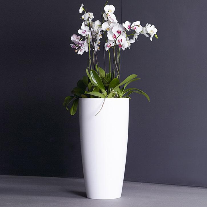 Ikala Hoge bloempot 'Vaso' 40 cm x 78 cm | Wit