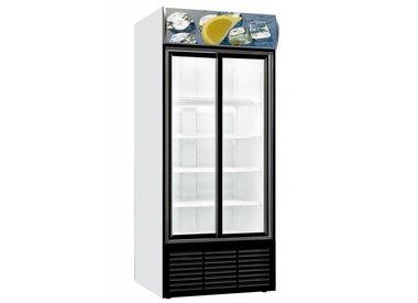 Gastro Kühlschränke mit Doppelglastür
