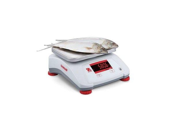 Ohaus Valor 2000 Waage | Maximal 3 kg Anzeige pro 0,5 G | Kunststoff-Gehäuse mit Edelstahl-Auflagefläche | 242x190 mm