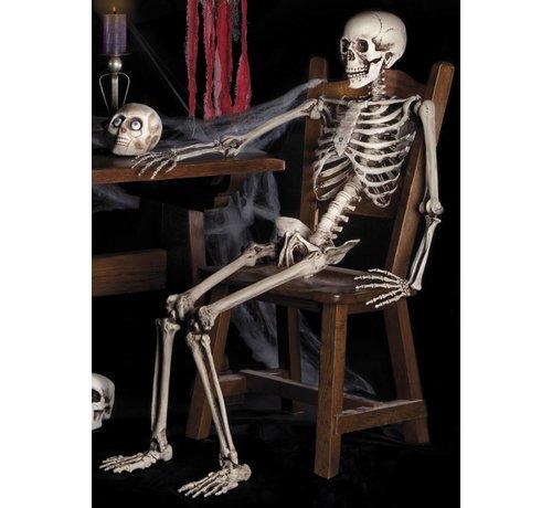 Menselijk skelet online kopen