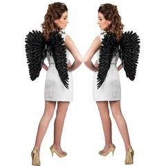 Engel vleugels zwart/zilver Luxe