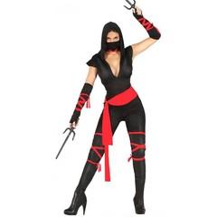 Sexy ninja