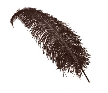 onjuiste nummer Struisvogelveren bruin