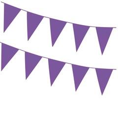 Grote vlaggenlijn paars 46x30 cm