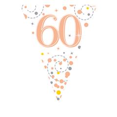 Vlaggenlijn 60