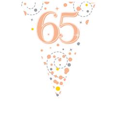 Vlaggenlijn 65