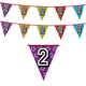 Versiering 2 jaar | Holografische Leeftijd Vlaggenlijn 2 jaar