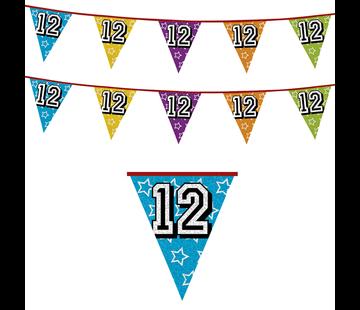 Vlaggenlijn 12 jaar | Glitter slinger 12 jaar