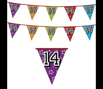 Vlaggenlijn 14 jaar | Glitter slinger 14 jaar