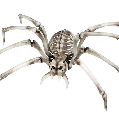 Halloween Spin skelet kopen