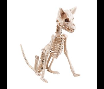 Hond skelet