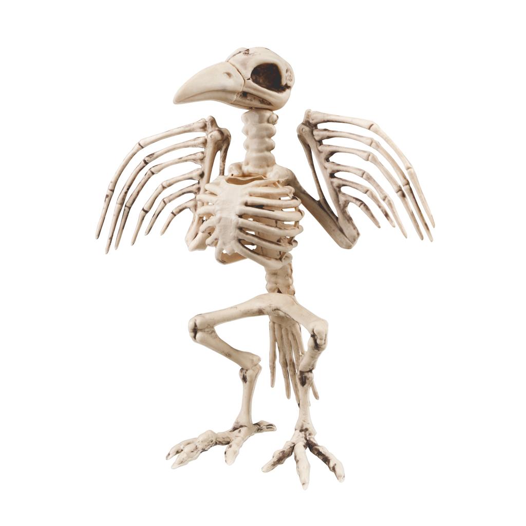 Skelet Voor Halloween.Halloween Kraaien Skelet Decoratie