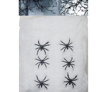 Spinrag met spinnen