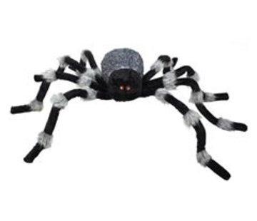 Reuzenspin giant spider