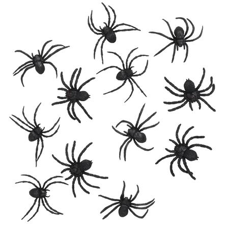 Kleine zwarte nep spinnen