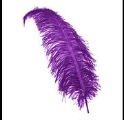 Paarse decoratie veren groot