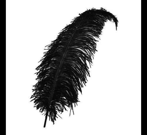 Zwarte veren kopen