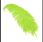 Lime groene decoratie veren