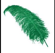 Struisvogelveren groen