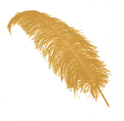 Struisvogelveren camel bruin