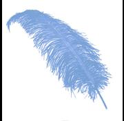 Ijsblauwe Struisvogelveren