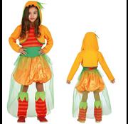 Pompoen kostuum meisje