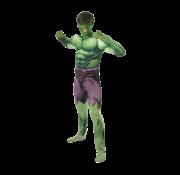 Hulk kostuum volwassenen