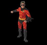 Robin kostuum volwassenen