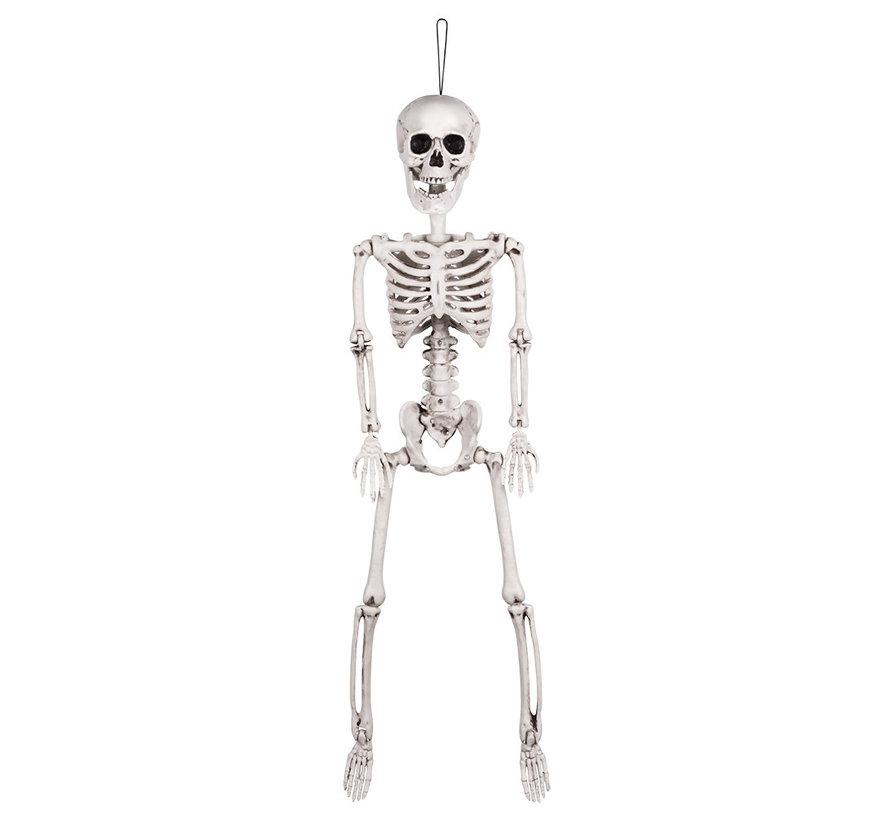 Beweegbare skelet 60 cm