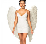 Grote Engelen vleugels wit