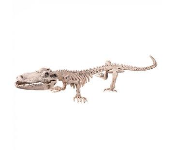 Krokodillen skelet