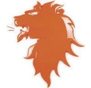 Oranje EK leeuw  wanddecoratie
