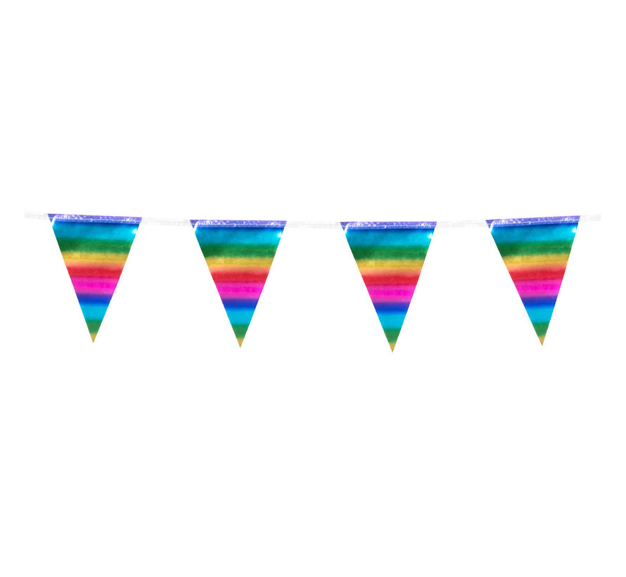Folie mini vlaggenlijn Regenboog slinger