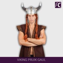Viking Pruik Gaul