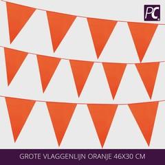 Grote vlaggenlijn oranje 46x30 cm