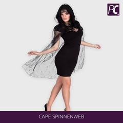 Cape spinnenweb