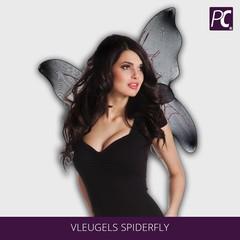 Vleugels Spiderfly